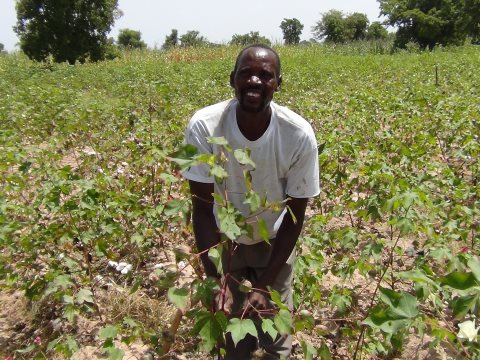 Moussa Konate cultivating his fields. Photo: Fernando Naves Sousa.