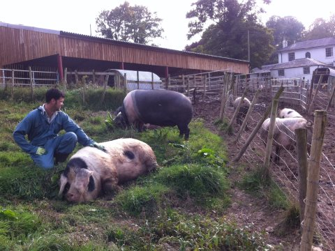 'Small holder farming traditions run through my blood; there was no other way I would choose to farm, I would never run a farm that was cruel.' Tom, Bellair Haye Farm. Photo: Pig Pledge.