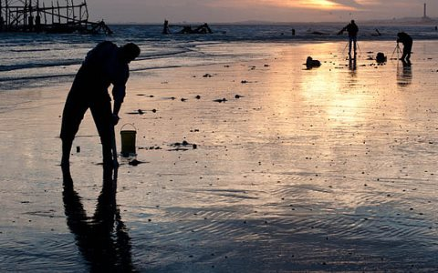 Hunting for lugworms for fishing bait at Brighton beach. Photo: Martin Thomas via Flickr.