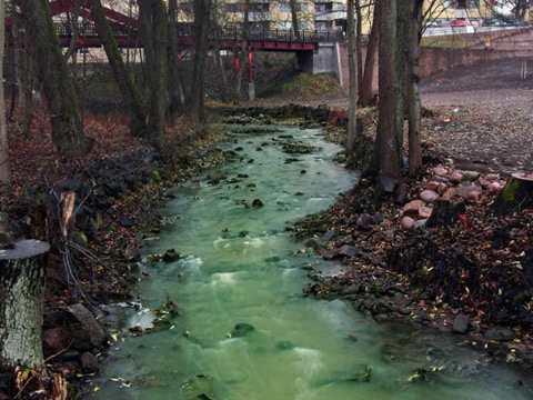 Polluted waterway