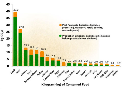 Footprint of food chart