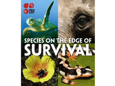Species on the Edge of Survival