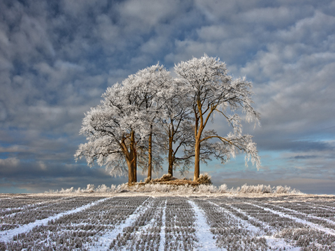 Landscape Photographer of the Year, 2011