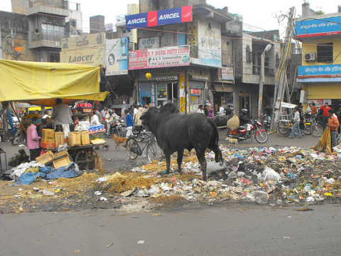 Almost every junction in India's sprawling cities seems to have it's own heap of festering rubbish. Photo:  George Tzilaris / Creative Commons 2.0.