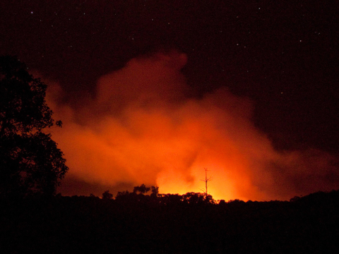 The Tripa Forest burning at night, cleared for palm oil. Photo: Carlos Quiles / RAN -  ran.org/tripa-expose -  via Flickr.com.