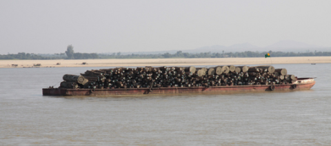 Teak logs on the Irrawaddy River on their way from the forests of northern Myanmar to markets in Mandalay or Yangon. Photo: Terry Feuerborn via Flickr.com.