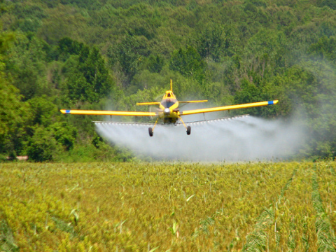 Crop dusting near Ripley, Mississippi, USA. Roger Smith via Flickr.com.