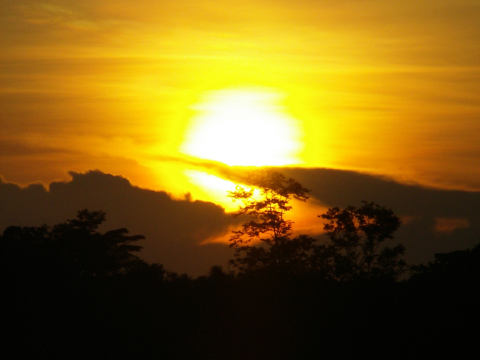 Sunset over the Peruvian Amazon near the Rio Napo. Photo: Ippei Yuge via Flickr.com.