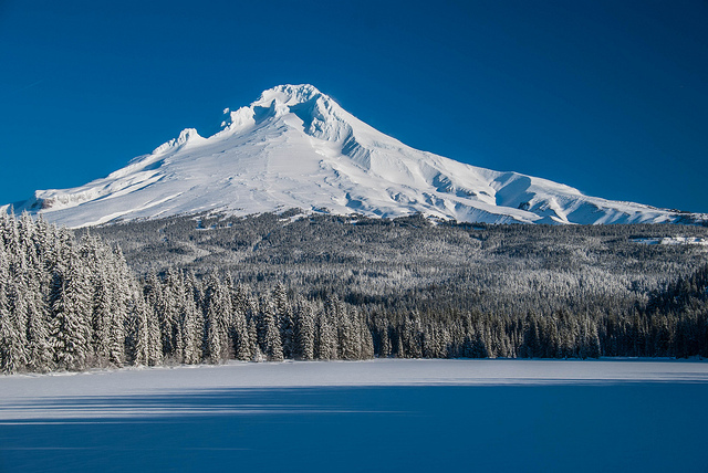 These trees may not last much longer. View of Mount Hood across a frozen Lake Trillium, Mount Hood National Forest. Photo: Karl Johnson via Flickr.com.