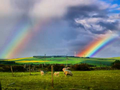 Is Cameron's policy to put an end to onshore wind power an illusion? Double rainbow with wind turbines. Photo: Gordon Robertson via Flickr.com.