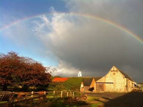 Peter Melchett farms organically at Courtyard Farm in Norfolk. Photo: Peter Melchett.