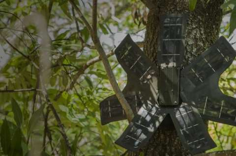 Smartphone tracking device ready for installing high in the forest canopy. Photo: Rainforest Connection (RFCx).