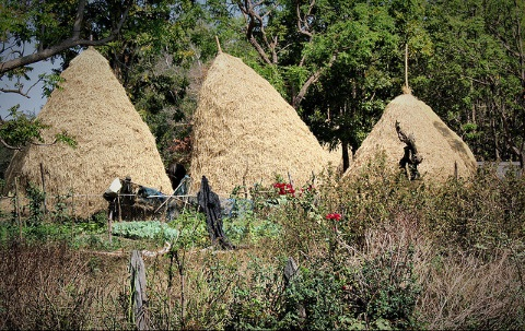 A typical indigenous village in up-country Buriram Province, NE Thailand. Photo: Pinyapat Smily Wilaichit via Flickr.