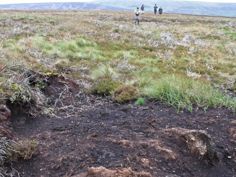Walshaw Moor, near Hebden Bridge, after burning to improve grouse yields. Photo: energyroyd.org.uk/ .