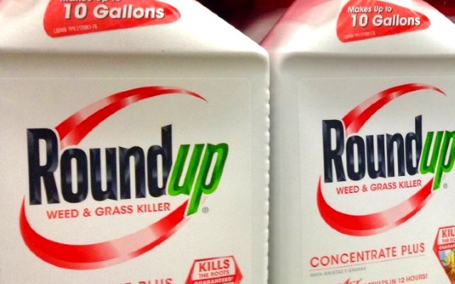 Monsanto's Roundup herbicide contains Glyphosate, one of the three herbicides that causes antibiotic resistance on pathogenic bacteria. Photo: via Sustainable Food Trust.