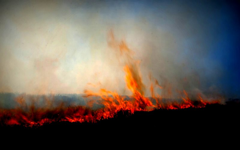 Fierce flames creep across moorland near Heriot, Scotland. Photo: Snipps Whispers (CC BY-NC-ND).
