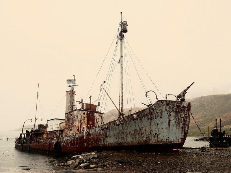 This is what was really doing the damage: industrial whaling by Britain, by ships like the Petrel, now an eerie hulk beached up on South Georgia Island. Photo: Christopher Michel via Flickr (CC BY).