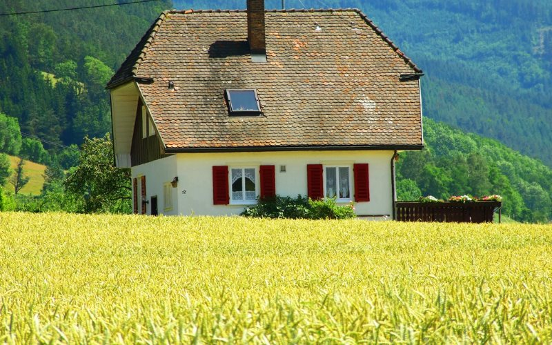 No GM crops here! Typical farm house amid cropland in the Schwarzwald (Black Forest), Germany. Photo: Domenico via Flickr (CC BY-NC-SA).