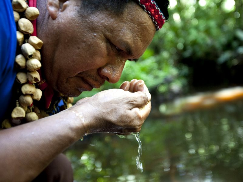 Cofan Indigenous leader Emergildo Criollo smells the petroleum contaminated river hear his home in the Amazon rainforest. Now the water is polluted, crops don't grow, and new illnesses and cancer have been introduced. Photo: Caroline Bennett / Rainforest