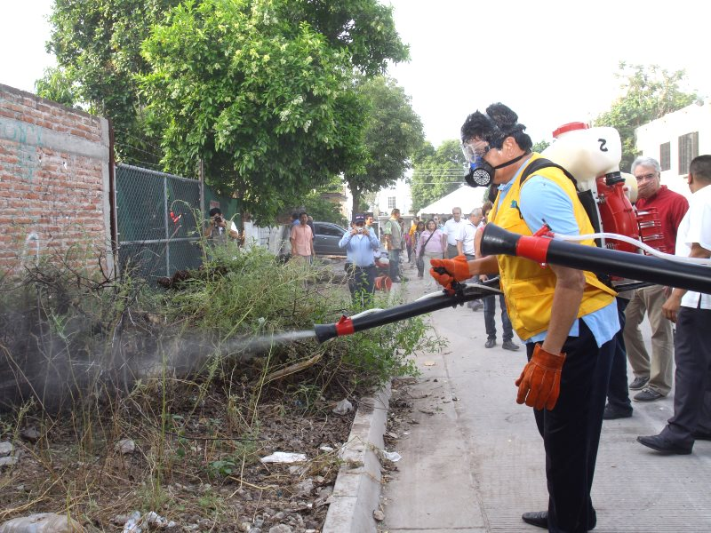 Insecticide spraying in Brazil, 2014. Photo: Malova Gobernador via Flickr (CC BY-NC-ND).