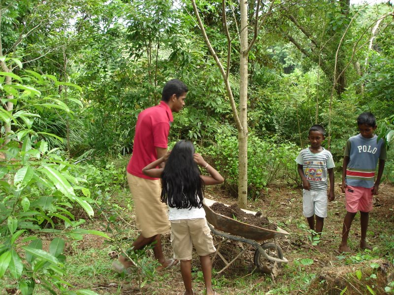 Children learn about the wild fruits of the forest. Photo: Damitha Rajapakse.