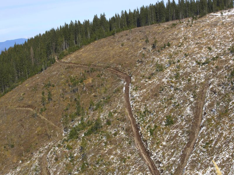 An illegal clear-cut on steep-sided hills in Harghita County, just a small part of a much larger illegal clear-cut. Photo: Ecostorm.
