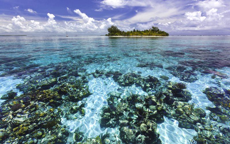 South Water Caye Marine Reserve is one of seven protected areas that make up the Belize Barrier Reef Reserve System World Heritage site, at risk from oil exploration and drilling. Photo: © Antonio Busiello / WWF-US.