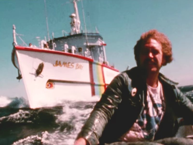 The Greenpeace ship James Bay was widely used in Greenpeace's iconic 'Save the Whale' campaign of the mid-1970s to obstruct the activities of killer boats intent on taking the last great whales. Photo: still from 'How to Change the World' (film by Greenpe