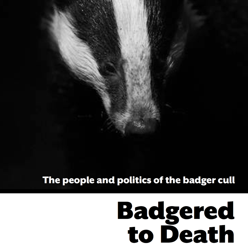 Front cover of 'Badgered to Death' by Dominic Dyer (exerpt), published by Canbury Press.
