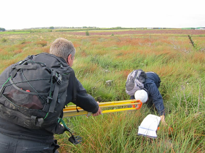 Durham Wildlife Trust volunteers surveying invertebrate populations at Stanley Moss, Sunniside, England. Photo: Dougie Nisbet via Flickr (CC BY-NC).