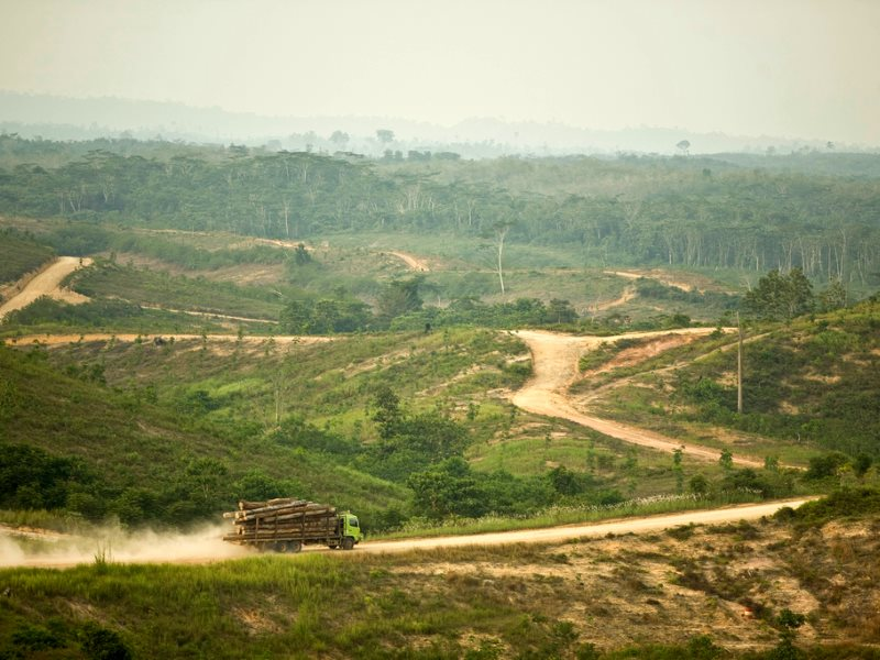 A logging truck in Asia Pulp and Paper's PT Wira Karya Sakti pulpwood forest license. Jambi Province, Sumatra, Indonesia, in 2005. Now APP is financing forest restoration through the Belantara Foundation. Photo: Rainforest Action Network via Flickr (CC BY
