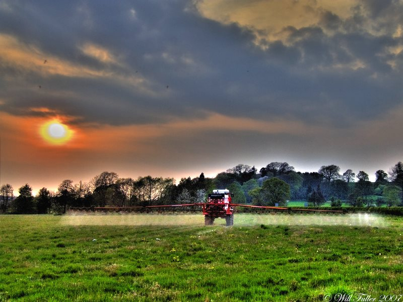 After Brexit, currently banned pesticides like atrazine could once again contaminate the British countryside. Photo: Will Fuller via Flickr (CC BY-NC-ND).