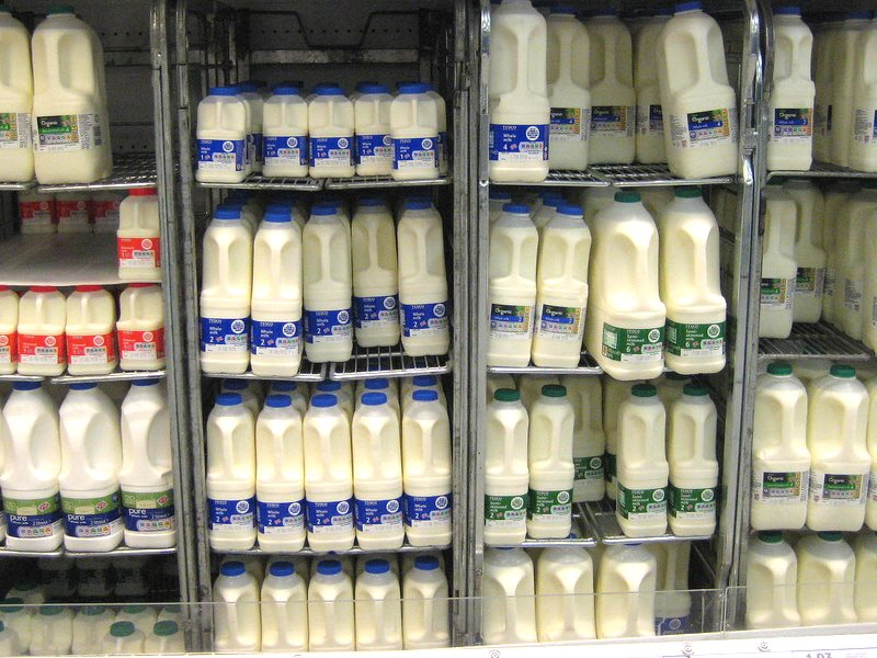 If it's not organic, milk in UK supermarkets is almost all from cattle fed GMOs in their feed. Photo: Echoplex7 via Flickr (CC BY-NC-ND).