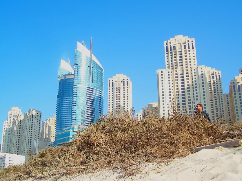 Skyscrape of Dubai, seen from the beach. Photo: ZeNahla via Flickr (CC BY-NC).