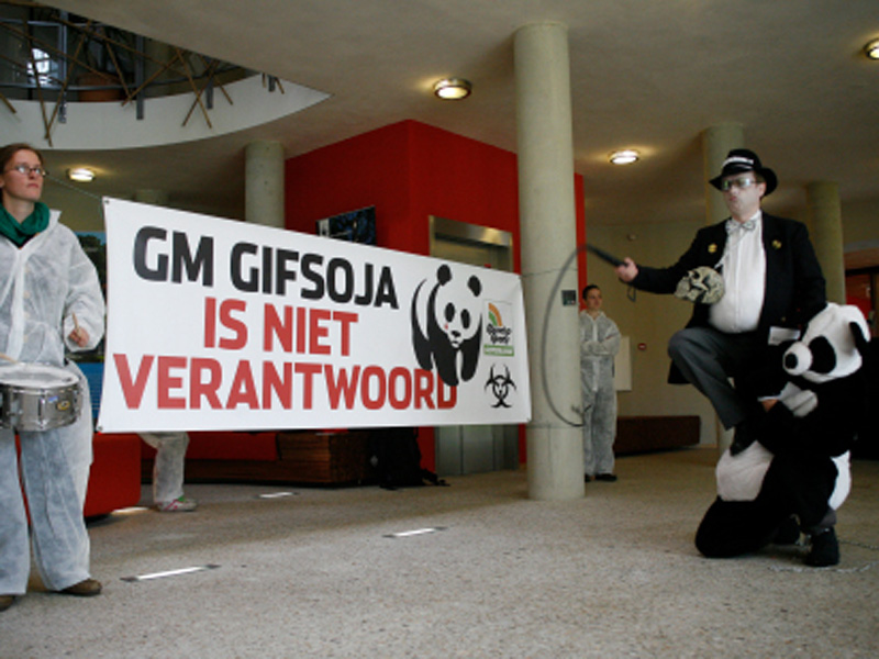 Protesters at WWF's Netherlands office hold a Monsanto 'circus' with a panda