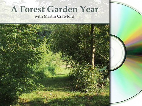 A Forest Garden Year DVD