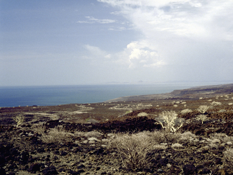 Lake Turkana in Northern Kenya