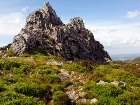 Stiperstones scene