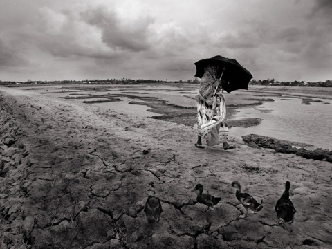 Climate change is already causing environmental degradation (Copyright: Mohammad Rakibul Hasan)