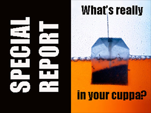 What's really in your cuppa?
