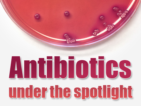 Antibiotics under the spotlight