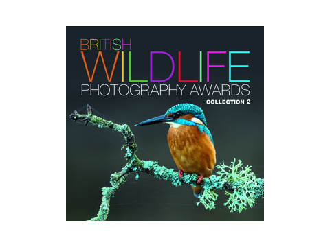 Competition : British Wildlife Photobook