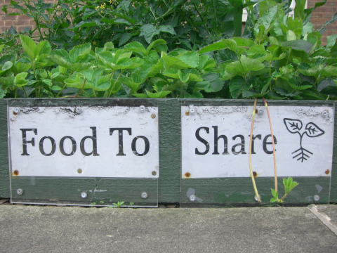 Food to share! Photo: Incredible Edible.