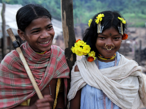 Dongria Kondh girls. Photo: © Survival International.