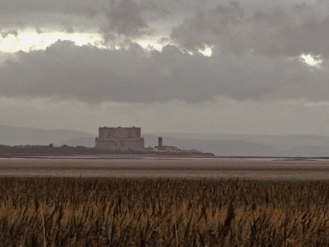 Hinkley Point nuclear plant, viewed across the reedbeds from Steart. Quantock Hills in the background. Photo: Mark Robinson via Flickr.com.