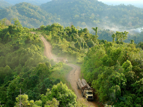Trucks carrying logs in Gunung Lumut, East Kalimantan, Indonesia. Photo: Jan van der Ploeg for Center for International Forestry Research (www.cifor.org / blog.cifor.org) via Flickr.com.