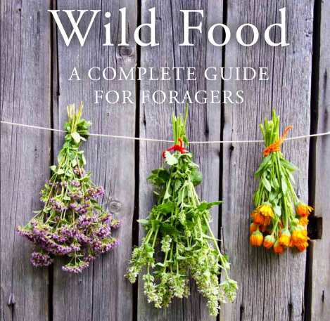 'Wild Food - a complete guide for foragers' by Roger Phillips - front cover.