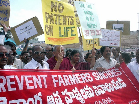 Vandana Shiva leads a protest in India against Monsanto's GM seeds. Now she's on the warpath against Avaaz. Photo: Daniel Voglesong via Flickr.