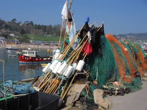 Artisanal fishing nets at the Cobb, Lyme Regis, Lyme Bay. Photo: geograph.org.uk via Wikimedia Commons.