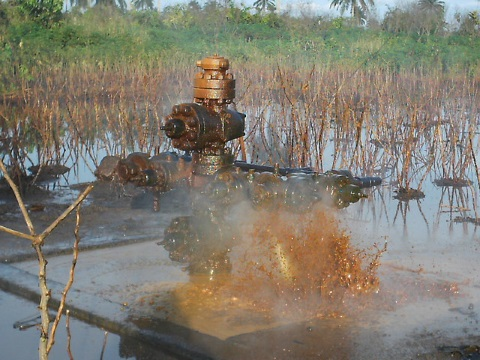 A Shell oil well-head in Ogoniland - situated in a wetland, and surrounded by spilt oil. Photo by Friends of the Earth International via Flickr.